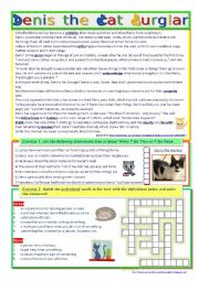 English Worksheet: Denis the Cat Burglar (Reading + Video Listening)