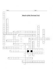 English Worksheet: Facial Muscle Cross Word