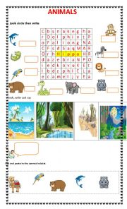 english exercises animals and their habitats. Black Bedroom Furniture Sets. Home Design Ideas