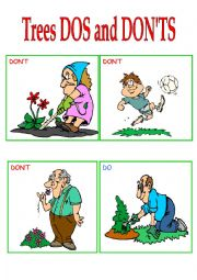 English Worksheet: Trees dos and don�ts flash-cards