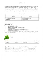 English Worksheet: Herbs