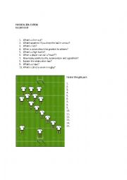 English Worksheet: Rugby Basics