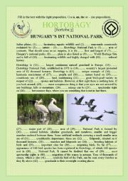 English Worksheet: Environment: National Park in Hungary- Articles