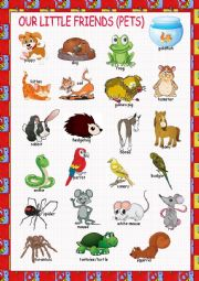 English Worksheet: Pets Picture Dictionary