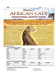 English Worksheet: AFRICAN CATS DISNEY VIDEO ACTIVITY