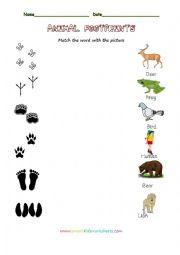 animal worksheet new 194 animal footprints worksheet. Black Bedroom Furniture Sets. Home Design Ideas