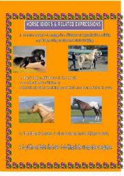 English Worksheet: Horse Idioms & expressions
