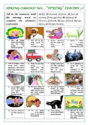 English Worksheet: SPRING IDIOMS (with key)