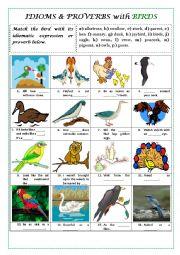 English Worksheet: BIRD IDIOMS AND PROVERBS (+ key and explanations)