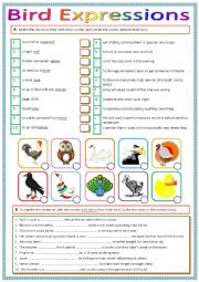 English Worksheet: Bird Idioms and Expressions