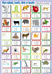 English Worksheet: more animals beasts and birds:multiple choice activity