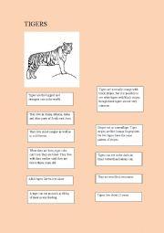 English Worksheet: Animal facts: tigers
