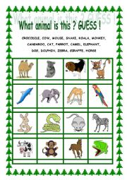 English Worksheet: what animal is this? Guess!