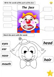English Worksheet: the parts of the face