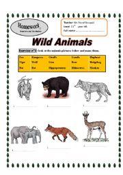 English Worksheet: Wild Animals