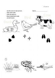 English Worksheet: Duck, Cow, Pig kinder matching