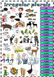 English Worksheet: irregular plurals