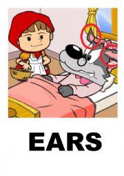 English Worksheet: Little red riding hood flashcards