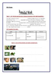 Remidial work