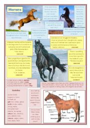 english worksheets lead in to the book war horse. Black Bedroom Furniture Sets. Home Design Ideas