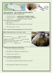 English Worksheet: CHILD LABOUR LISTENING COMPREHENSION