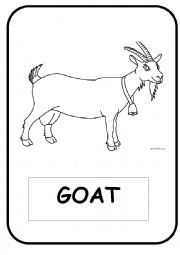 English Worksheet: Domestic Animals Flash-cards (Black and White)