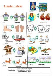 English Worksheet: basic irregular plurals