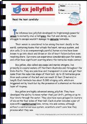 English Worksheet: Jellyfish