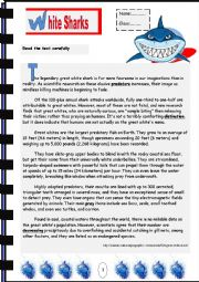 English Worksheet: Whtie Sharks