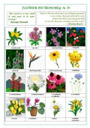 English Worksheet: FLOWERS PICTIONARY A- D (part I)