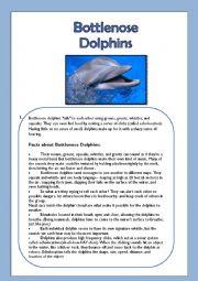 English Worksheet: Bottlenose Dolphins- Reading Comprehension