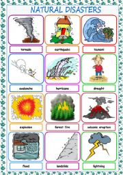 English Worksheet: Natural Disasters Picture Dictionary