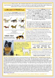 English Worksheet: The Yellow Dog Project