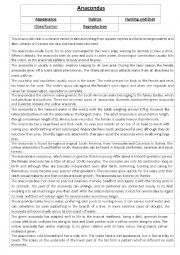 English Worksheet: Anacondas - Information Report