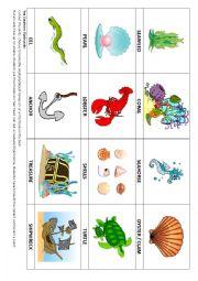 English Worksheet: Sea Animal Flashcards & Game
