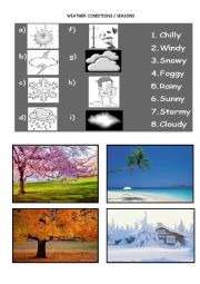 English Worksheet: WEATHER CONDITIONS AND SEASONS