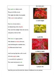 English Worksheet: TREES 2 (a poem + a pictionary)