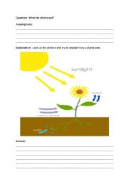 photosythesis experiments for kids What is photosynthesis this lesson on photosynthesis teaches kids how plants make their own food from carbon dioxide and water in the presence of chlorophyll using sun light.