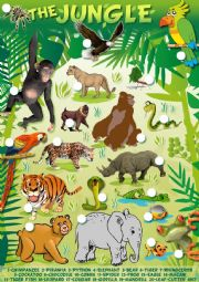 English Worksheet: Trip to the jungle