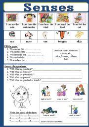 English Worksheet: Senses