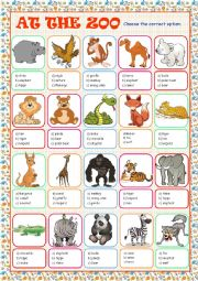 English Worksheet: At the Zoo (Multiple Choice)
