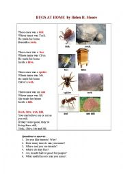 English Worksheet: Bugs at Home (a poem and questions to answer)