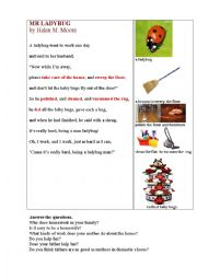 English Worksheet: Mr Ladybug (a funny poem about housework)