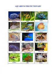 English Worksheet: AQUARIUM FISH