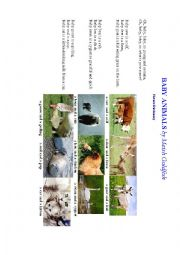 English Worksheet: BABY ANIMALS (a poem + an exercise)
