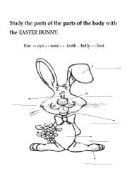 English Worksheet: Easter Bunny and the parts of the body