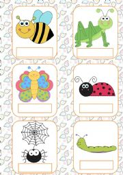 English Worksheet: Insects flashcards