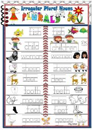 English Worksheet:  Pictorial dictionary- Irregular  Plural  Nouns