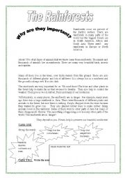 English Worksheet: why are rainforests important?