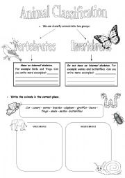 English Worksheet: Animal Classification